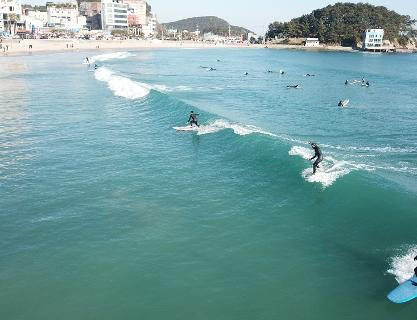 Surfing Courses and Lessons